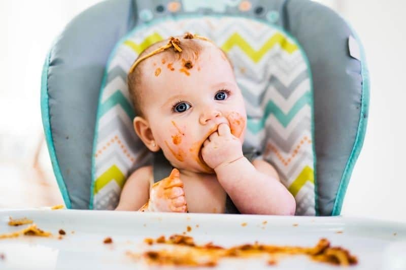 baby led weaning, what is baby led weaning, baby led weaning foods, baby led weaning cookbook